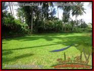 TANAH di UBUD DIJUAL 1,600 m2 di Sentral Ubud