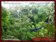 DIJUAL TANAH di UBUD BALI Untuk INVESTASI TJUB493