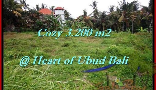 JUAL TANAH MURAH di UBUD BALI 3,200 m2 di Sentral Ubud