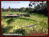 DIJUAL TANAH di UBUD BALI 1,900 m2 di Ubud Tegalalang