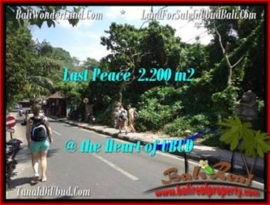 JUAL TANAH MURAH di UBUD BALI 2,200 m2 di Sentral Ubud