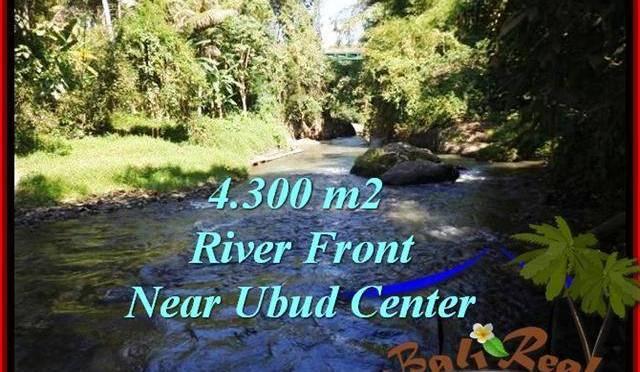 TANAH JUAL MURAH UBUD 4,315 m2 View Sungai dan tebing