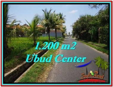 TANAH di UBUD BALI DIJUAL MURAH 1,200 m2 di Sentral Ubud