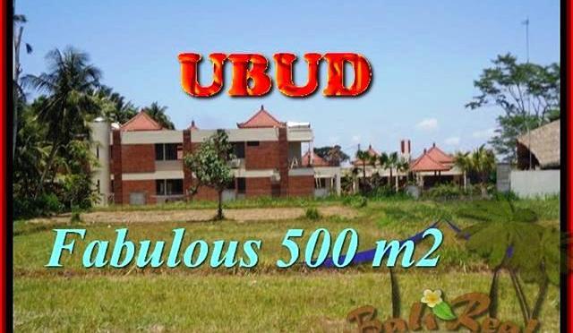 TANAH di UBUD BALI DIJUAL TJUB435