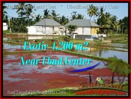 JUAL TANAH di UBUD 4,200 m2 View Sawah link Villa