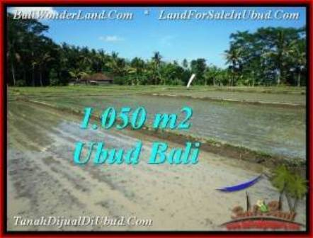 TANAH di UBUD BALI DIJUAL MURAH 1,050 m2 di Sentral Ubud