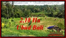 TANAH MURAH JUAL UBUD 21,800 m2 View Sawah dan sungai ayung, link. villa