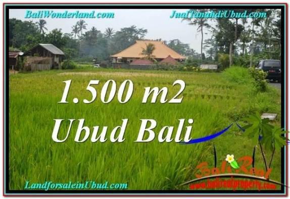 JUAL TANAH MURAH di UBUD BALI 1,500 m2 di Ubud Tampak Siring