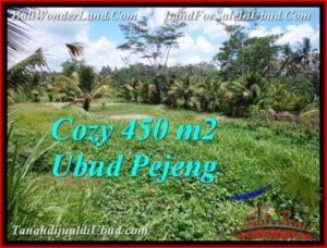 JUAL MURAH TANAH di UBUD BALI 450 m2  View Sawah link villa