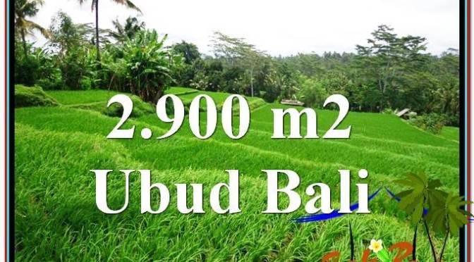 JUAL TANAH MURAH di UBUD BALI Untuk INVESTASI TJUB564