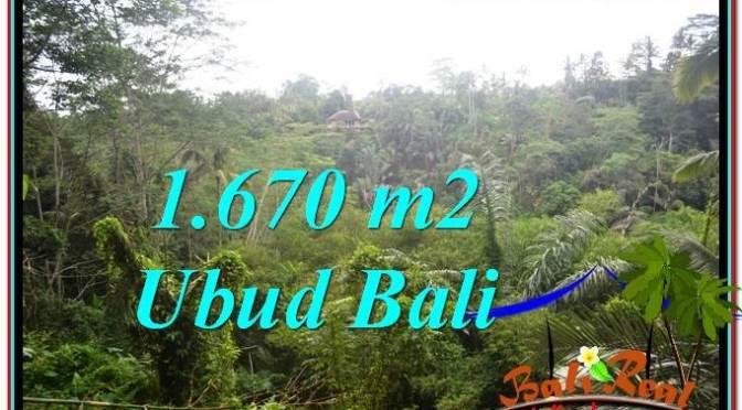 TANAH di UBUD DIJUAL MURAH 1,670 m2 di Ubud Payangan