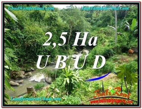 TANAH MURAH JUAL di UBUD BALI 26,000 m2  View Sawah, Sungai dan Tebing