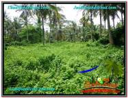 JUAL MURAH TANAH di UBUD 260 Are View Sawah, Sungai dan Tebing