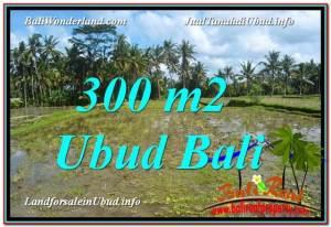 DIJUAL TANAH di UBUD Untuk INVESTASI TJUB619