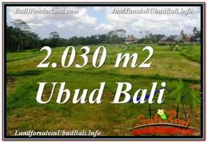 TANAH MURAH JUAL di UBUD BALI 2,030 m2 View Sawah lingkungan Villa