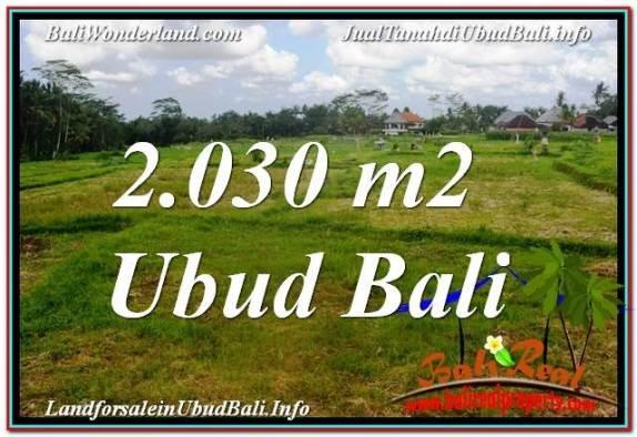 TANAH di UBUD BALI DIJUAL MURAH 2,030 m2 di Ubud Tegalalang