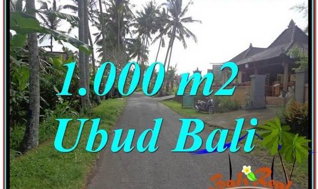 DIJUAL TANAH di UBUD BALI 10 Are di Ubud Pejeng