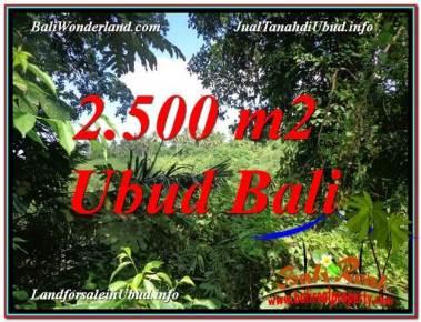 TANAH MURAH DIJUAL di UBUD BALI 2,500 m2 di Ubud Pejeng