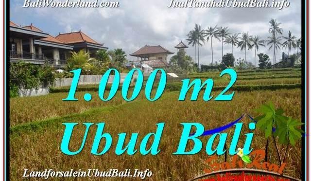 TANAH MURAH di UBUD BALI 1,000 m2 di Ubud Pejeng