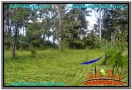 JUAL TANAH MURAH di UBUD 6 Are View kebun lingkungan Villa