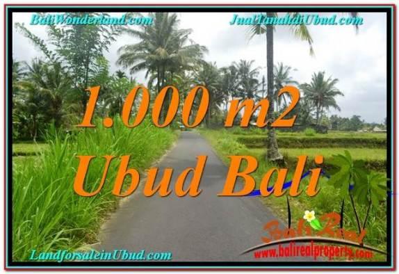 TANAH DIJUAL MURAH di UBUD 1,000 m2 di Ubud Tampak Siring