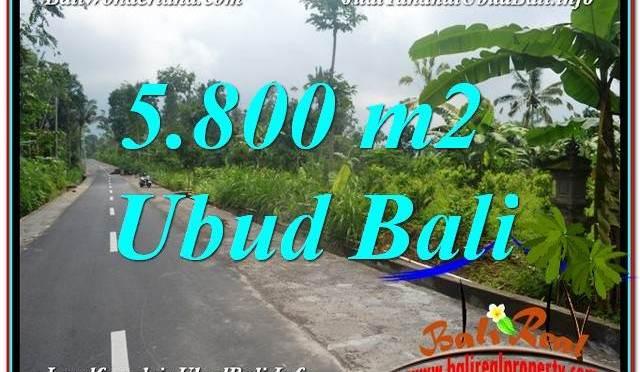TANAH di UBUD JUAL MURAH 5,800 m2 View Hutan dan Sungai