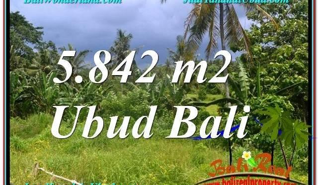 DIJUAL TANAH di UBUD BALI 58 Are di Sentral / Ubud Center