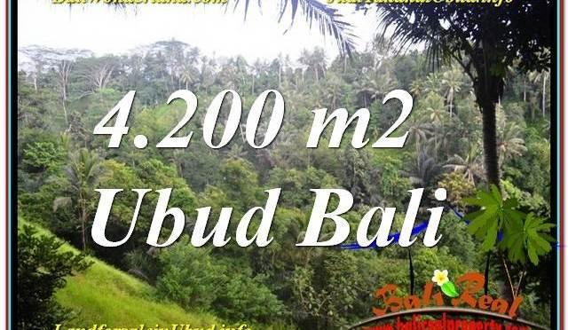 DIJUAL MURAH TANAH di UBUD BALI 42 Are di Sentral / Ubud Center