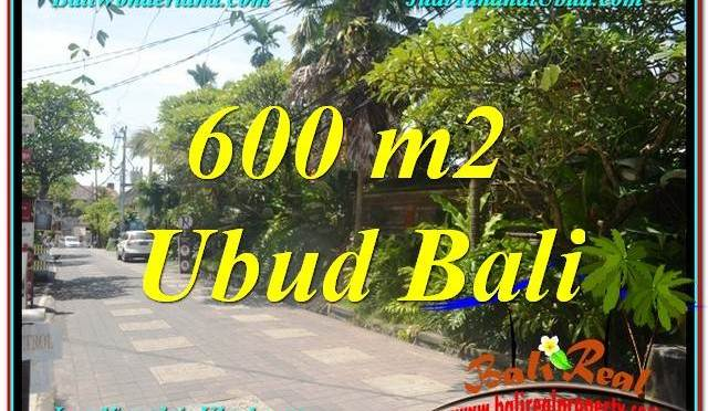 TANAH DIJUAL MURAH di UBUD BALI 600 m2 di Sentral / Ubud Center