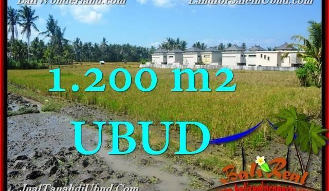 TANAH di UBUD JUAL MURAH 12 Are View Sawah link Villa