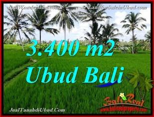 TANAH DIJUAL di UBUD 3,400 m2  View Sawah link Villa