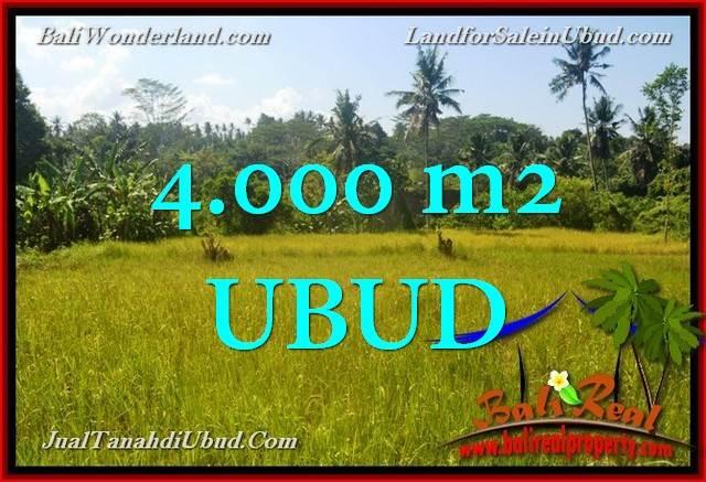 TANAH di UBUD BALI DIJUAL MURAH 4,000 m2 di Ubud Gianyar