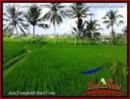 JUAL TANAH MURAH di UBUD 34 Are View Sawah link Villa