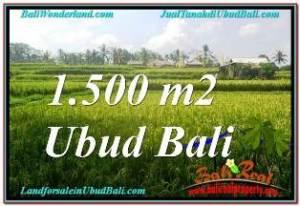 JUAL TANAH MURAH di UBUD Untuk INVESTASI TJUB667