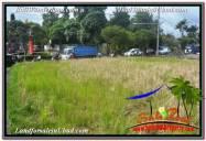 TANAH DIJUAL di UBUD BALI Untuk INVESTASI TJUB671