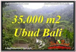 JUAL MURAH TANAH di UBUD 350 Are VIEW SAWAH DAN LOS SUNGAI