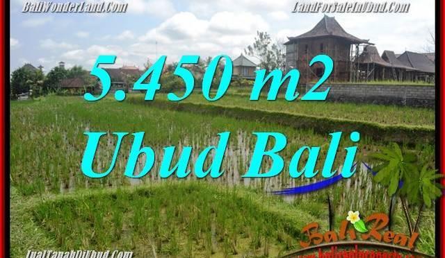 Investasi Property, Tanah Murah di Ubud Bali Dijual TJUB688