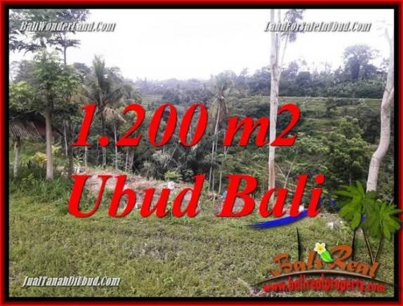 Tanah Dijual di Ubud 1,200 m2  View sawah dan sungai