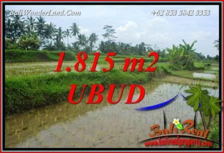 JUAL Murah Tanah di Ubud Bali 1,815 m2  View sawah