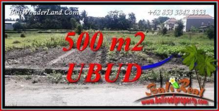 Tanah Dijual di Ubud Bali Untuk Investasi TJUB720