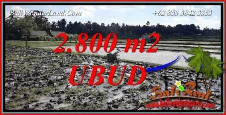 Dijual Murah Tanah di Ubud Bali 28 Are di Sentral Ubud