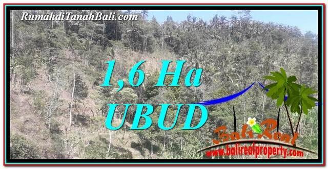 TANAH MURAH JUAL UBUD 16,000 m2 View Tebing dan Sungai