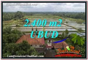 DIJUAL TANAH MURAH di UBUD BALI 2,400 m2 di Ubud Pejeng
