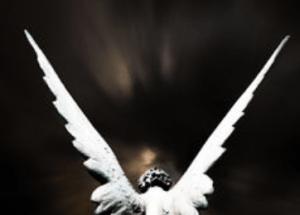 tanahoy.com guardian angels -2
