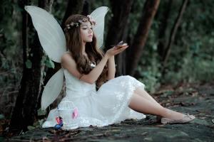 tanahoy.com fairy