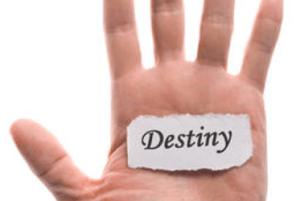 tanahoy.com destiny