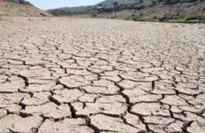tanahoy.com drought