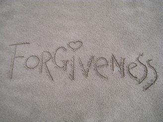 tanahoy.com forgiveness