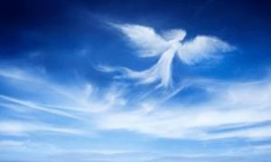 tanahoy.com guardian_angel_protection1
