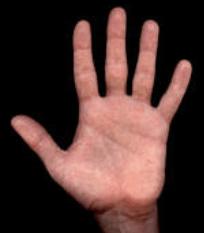 tanahoy.com hand